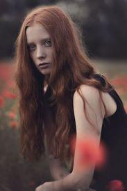 Laura Roth
